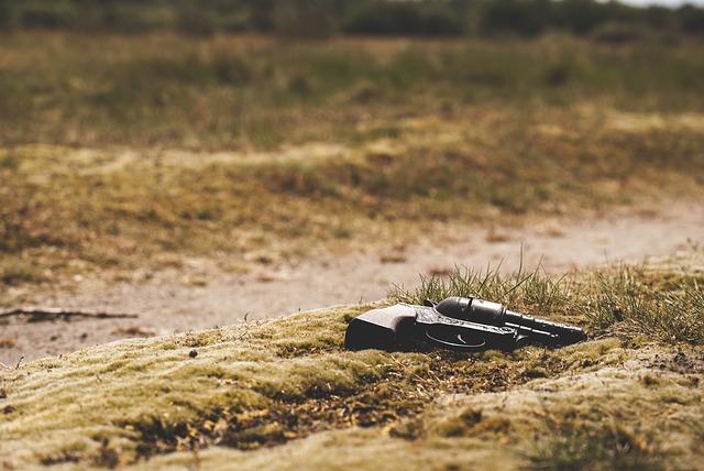 gun-801836_640.jpg